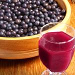 bulk acai berry juice concentrate