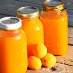 bulk apricot juice concentrate
