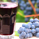 bulk concord grape juice concentrate