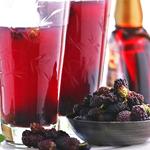 bulk mulberry juice concentrate