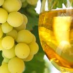 bulk white grape juice concentrate